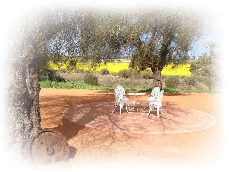 bridal-chairs-circular-paving