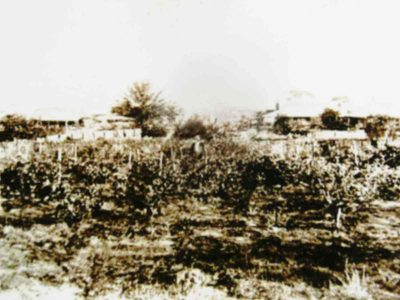 historical-homestead-goomalling, goomalling-history-records